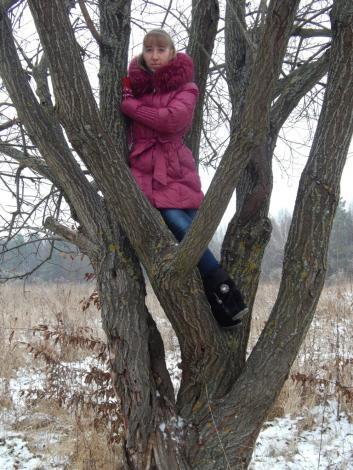 Кто где, а я на дереве